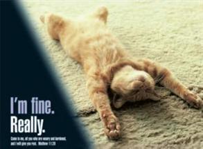 I'm Fine Really -