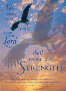 But They That Wait Upon the Lord -