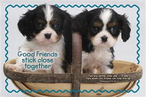 Good Friends Stick Close Together -