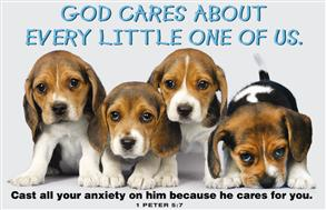 God Cares About Every Little One Of Us -