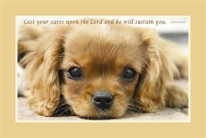 Cast your cares upon the Lord and he will sustain you -