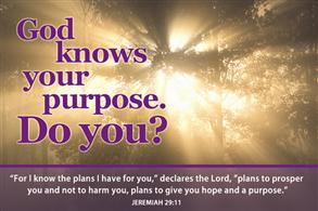God knows your purpose. Do you? -