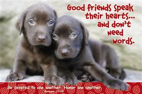 Good Friends Speak Their Hearts.. -