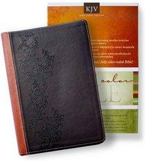 KJV Full Color ( Rainbow) Bible -