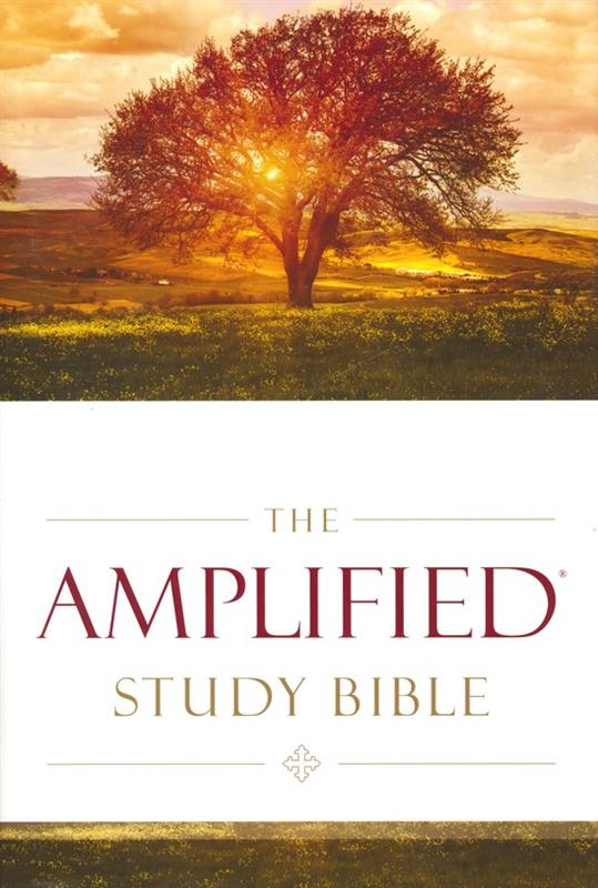 Amplified Bible Study Hardcover Large Print - ISBN: 9780310440307 at